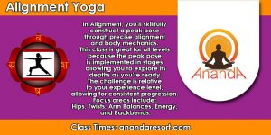 Alignment Flow @ Ananda Yoga & Detox Center | Tambon Ko Pha-ngan | Chang Wat Surat Thani | Thailand