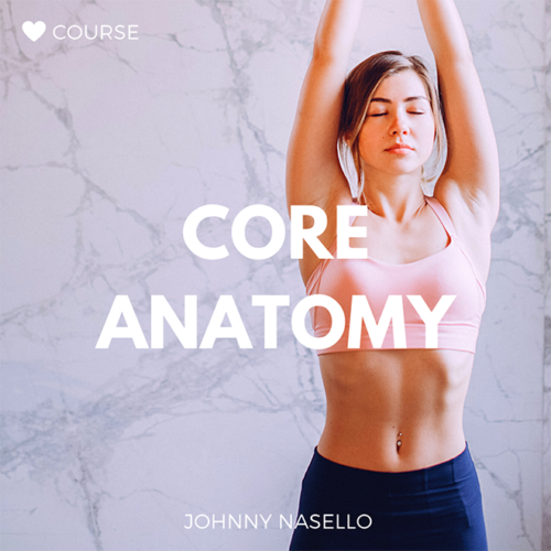 Core Anatomy