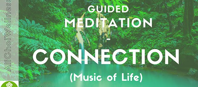 Music of Life Connection Meditation