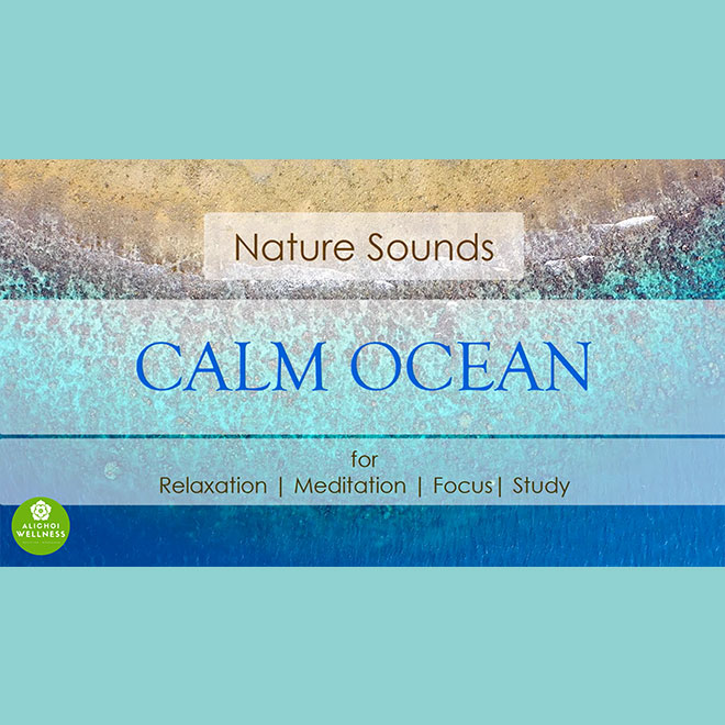 Nature Sounds Ocean Calm