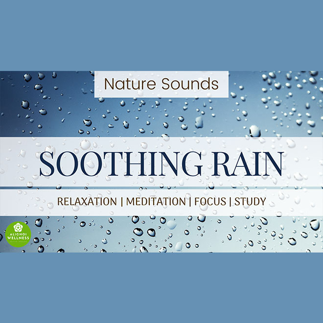 Nature Sounds Soothing Rain
